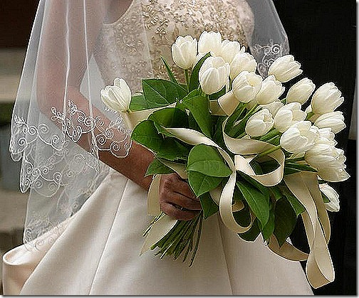white tulips bride